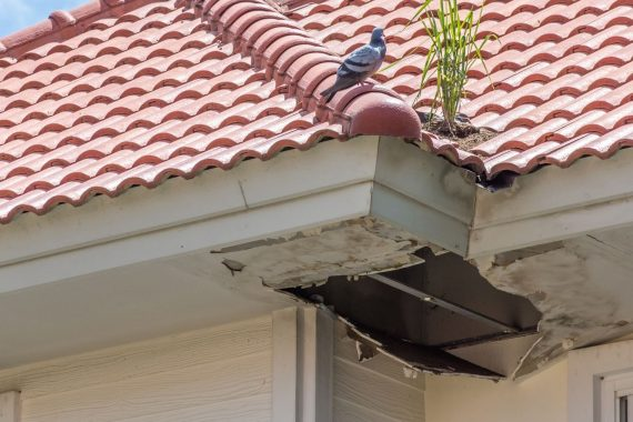 5 Common Roofing Problems to Tackle in the New Year